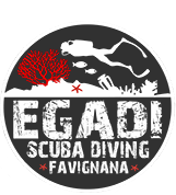 Homepage | Egadi Scuba Diving - Favignana